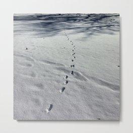 Fox tracks in snow * Metal Print
