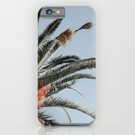 Waving palmtree with blue sky iPhone Case