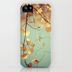 golden aspen Slim Case iPhone (5, 5s)