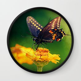American Swallowtail Wall Clock