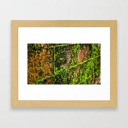 Moss Wall Framed Art Print