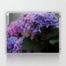 Big Hortensia flowers in front of a window Laptop & iPad Skin
