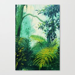 Rainforest Lights and Shadows Canvas Print