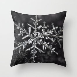 Two Snowflakes Throw Pillow