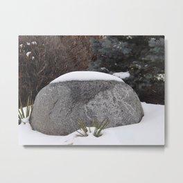 Snowcapped Metal Print