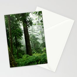 Light Fog in the Dense Forest Stationery Cards