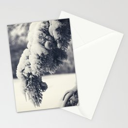 Beauty of Winter 24 Stationery Cards
