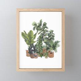 House Plants Watercolor Illustration 9 Framed Mini Art Print