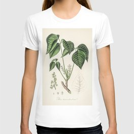 Poison ivy (Rhus toxicodendron)  from Medical Botany (1836) by John Stephenson and James Morss Churc T-shirt