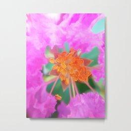 Pink crapemyrtle flower Metal Print