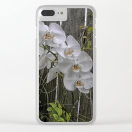 White Moth Orchid Clear iPhone Case