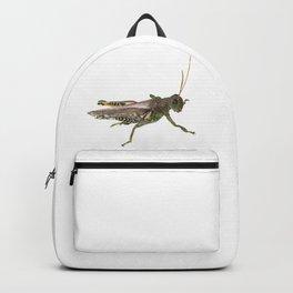 Grasshopper Backpack