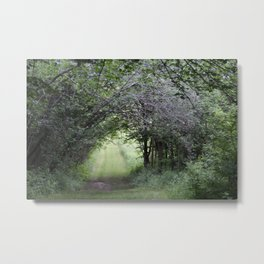 In the Hedges Metal Print