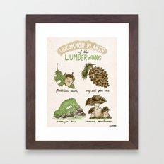 Uncommon Plants Of The Lumberwood Framed Art Print