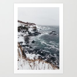 Cape Elizabeth Coast Art Print