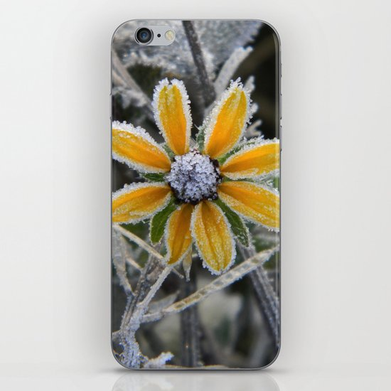 frozen smile iPhone & iPod Skin