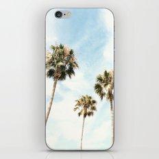 Palm Trees Please iPhone & iPod Skin
