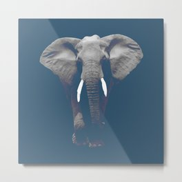 Dust Blue Elephant Metal Print
