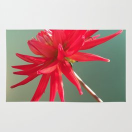 Red Imperfect Flower Rug