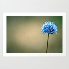Blue Cotton Art Print