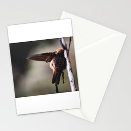 Open Wing Hummingbird  Stationery Cards