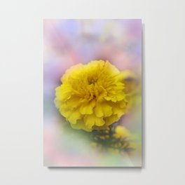 the beauty of a summerday -143- Metal Print