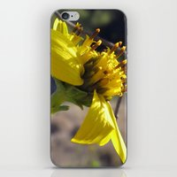 reassurance iPhone & iPod Skins featuring Reassurance by VioletRosePetals