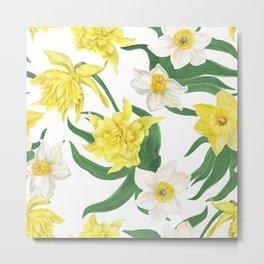 daffodil flowers Metal Print