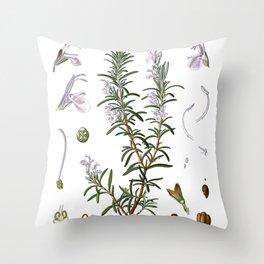 Nature, botanical print, flower poster art of Rosemary Throw Pillow