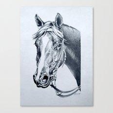 Handsome : Vain (Aust) Canvas Print