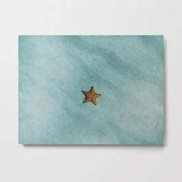 Starfish Metal Print