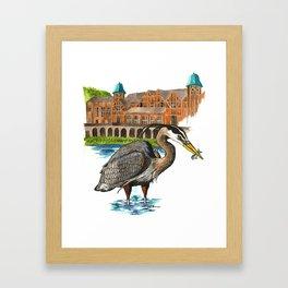 Great Blue Heron in Humboldt Park Framed Art Print