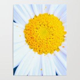 SMILE - Daisy Flower #2 Poster
