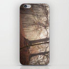 Autumn Fantasy : Mist and Mistery iPhone Skin