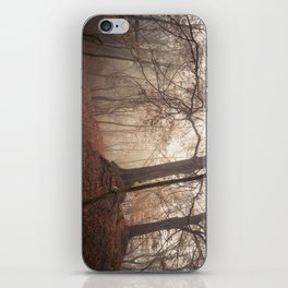 Autumn Fantasy : Mist and Mistery iPhone Skin