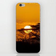 African sun iPhone & iPod Skin