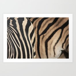 Herd Formation Art Print