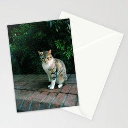 kedi.5 Stationery Cards