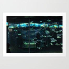 Barcelona Aquarium V Art Print