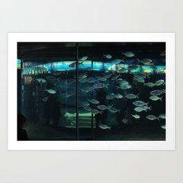 Barcelona Aquarium V Art Print