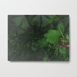 Looking down Metal Print