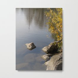 Slipping Away Metal Print