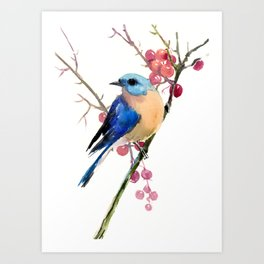 Bluebird and Berries Art Print
