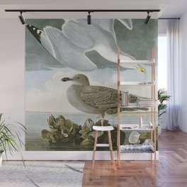 Seagulls Illustration - Birds in America Wall Mural