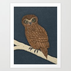 Boobook Owl Art Print