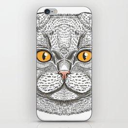 Scottish Fold cat iPhone Skin