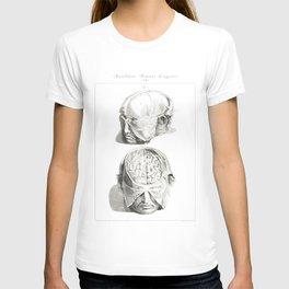 Human Anatomy Art Print HEAD BRAIN SKULL Vintage Anatomy, doctor medical art, Antique Book Plate, Me T-shirt
