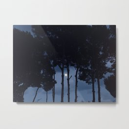 Full moon into the woods Metal Print