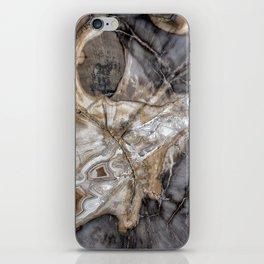 Petrified wood 3266 iPhone Skin