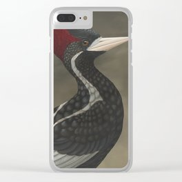 Ivory-billed Woodpecker (Campephilus principalis) Clear iPhone Case